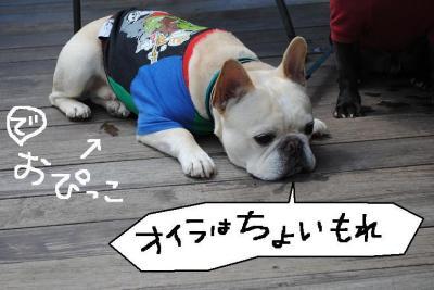 縺。繧・>繧ゅl莨昴■繧・s_convert_20120402213923