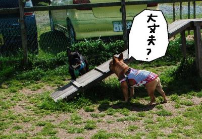 螟ァ荳亥、ォ・歙convert_20120407121114