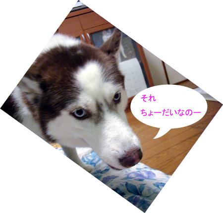 071005_01.jpg