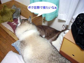 071017_01.jpg
