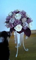 flower27