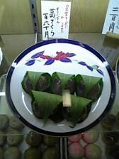 kuzuzakura