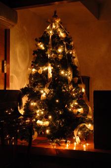 christmastree3a.jpg