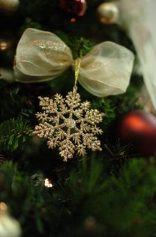 christmastree5.jpg