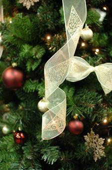 christmastree6.jpg