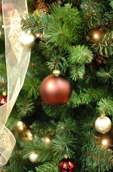 christmastree7.jpg