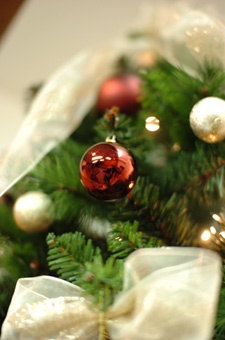 christmastree8a.jpg