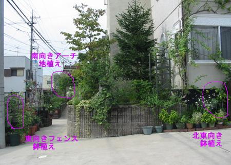 okisuzuzenkei903.jpg