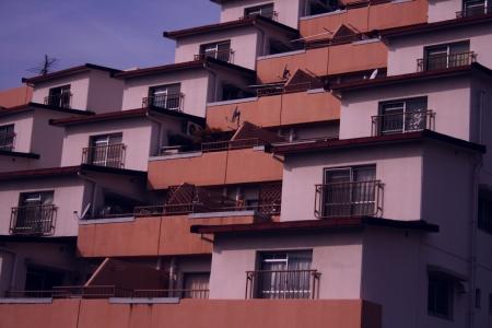 蜂の巣住宅