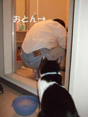 20070705sasuke2.jpg