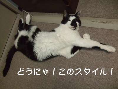 20070721sasuke.jpg