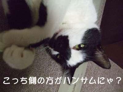 20070721sasuke2.jpg