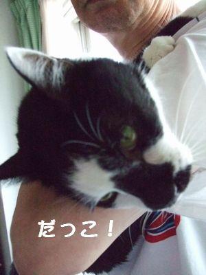 20070924sasuke2.jpg