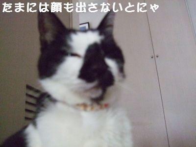 20070927sasuke3.jpg