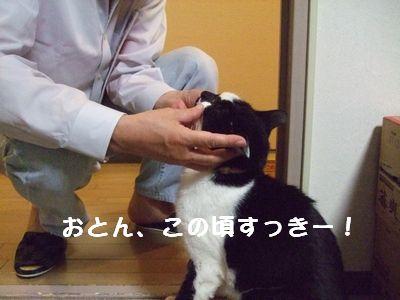20070929sasuke4.jpg