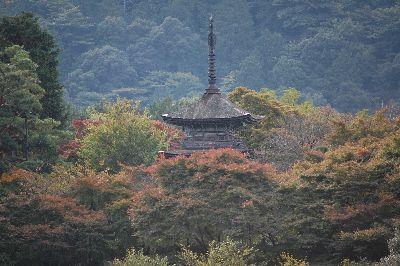 20071120koyasunoto.jpg