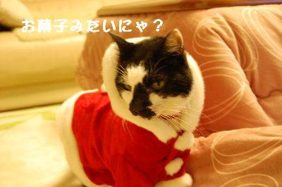 20071213sasuke4.jpg