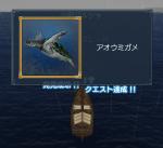 アオウミガメ