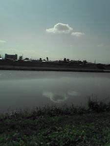 SA330014.jpg