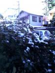 07年仙台初雪