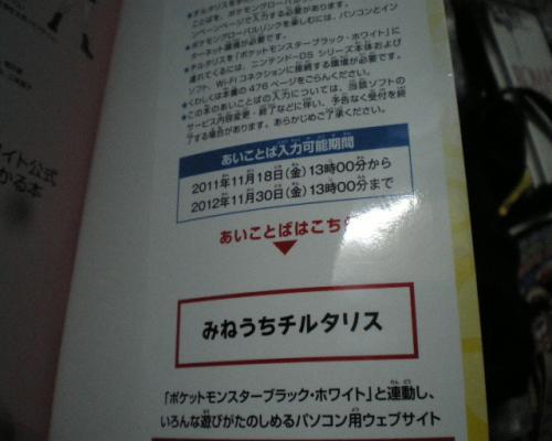 IMGP1117_convert_20111118184408.jpg