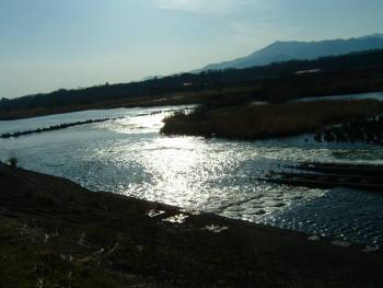 sagamigawa2.jpg