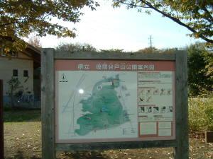 yatoyama1.jpg