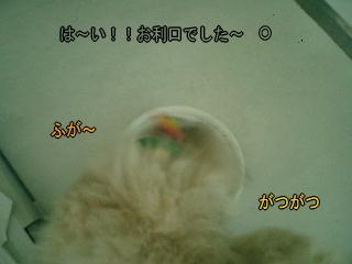 20070703223349.jpg