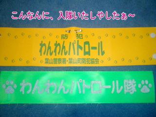 20070806215034.jpg