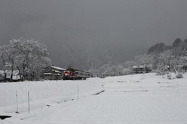 nodokanakagawa