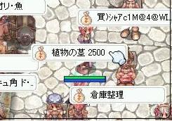 syokubutukuki2500.jpg