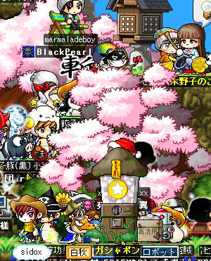 blog067a-100.jpg