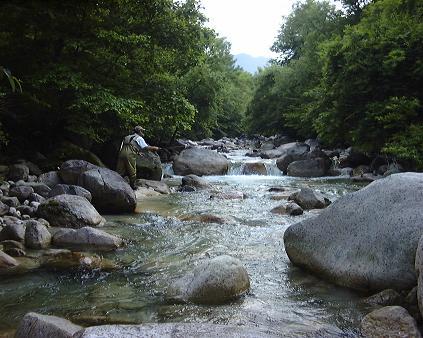 夏の川(2000年)