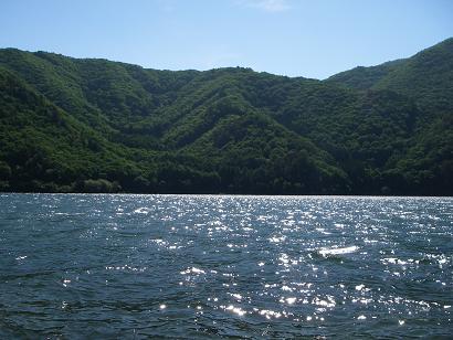近所の湖(2007年6月)