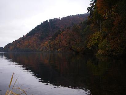 近所の湖(2007年11月10日)