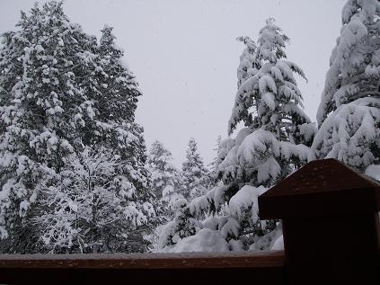 バルコニーからの雪景色