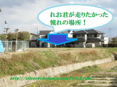 P3270007.jpg