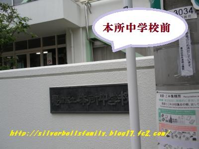 P4220072.jpg