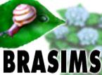 brasims_tuyu145107.jpg