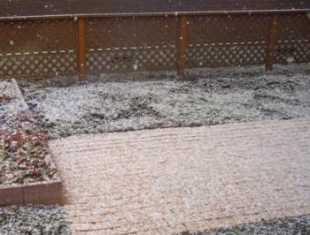 雪が降る。