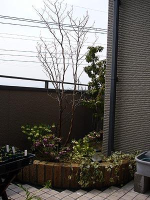 テラス花壇