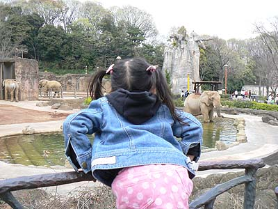 多摩動物園4