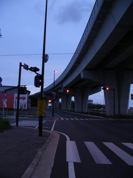 P1130035.jpg