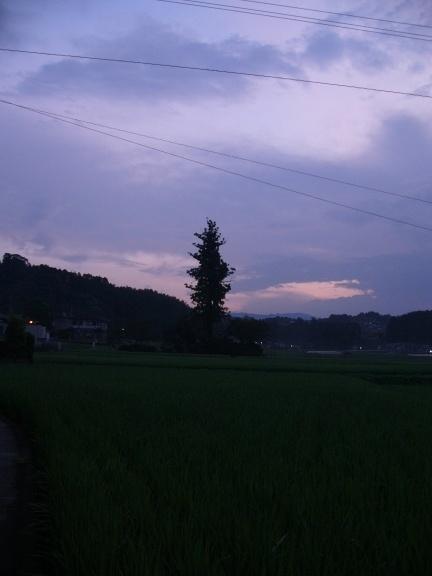 p1180126.jpg