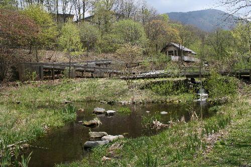 休暇村内の湿原