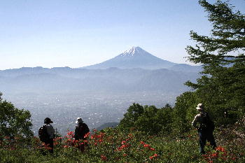 甘利山より富士山