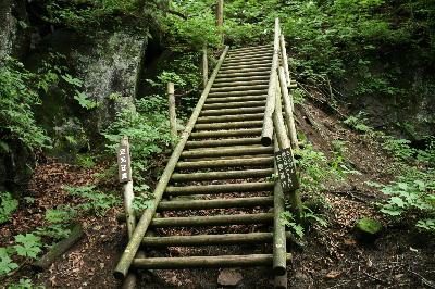 梯子のような階段