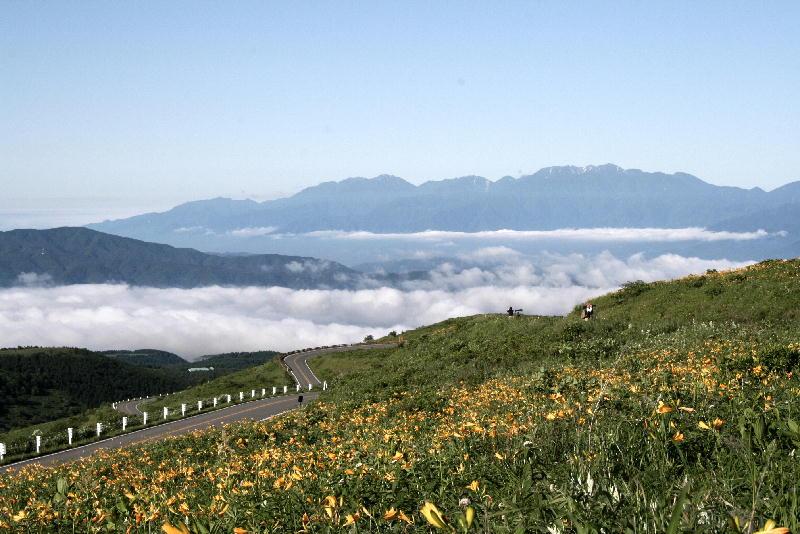 雲海とニッコウキスゲ