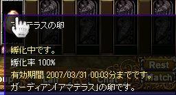 20070330000034.jpg