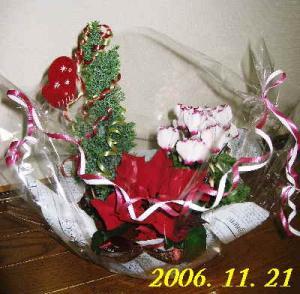 20070516141132.jpg